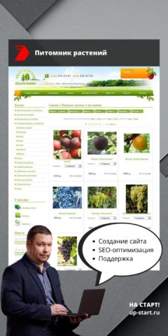 Разработка интернет-магазина саженцев