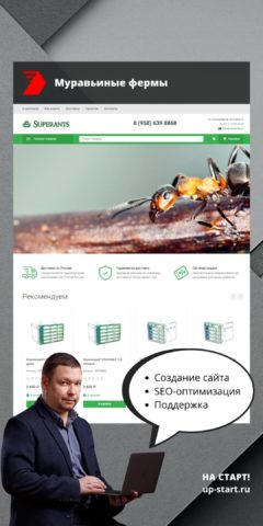 Разработка интернет магазина муравьиных ферм